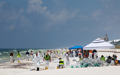 Clean up workers near Casino Beach. Taken 6-23-2010 on Pensacola Beach. The day the oil hit hard. Black Wednesday.