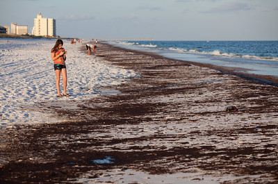 My daughter taking photos of the oil. Taken 6-23-2010 on Pensacola Beach. The day the oil hit hard. Black Wednesday.