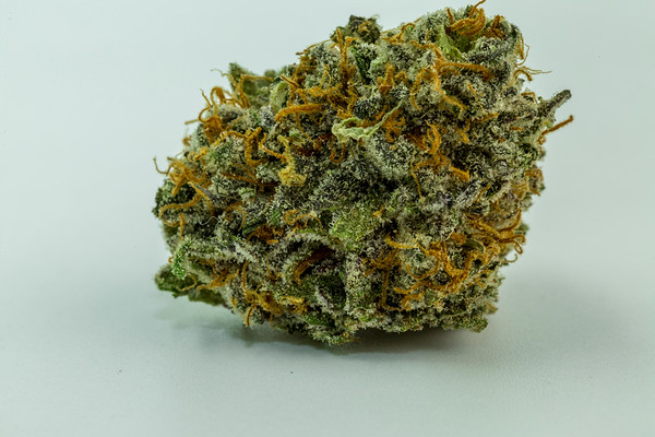 purple punch-3076