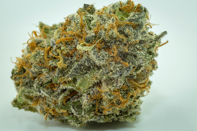 purple punch-3078