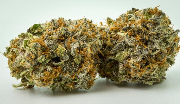 purple punch-3081