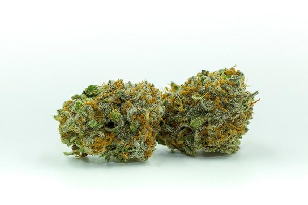 purple punch-3083