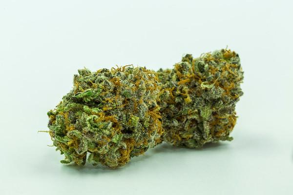 purple punch-3085