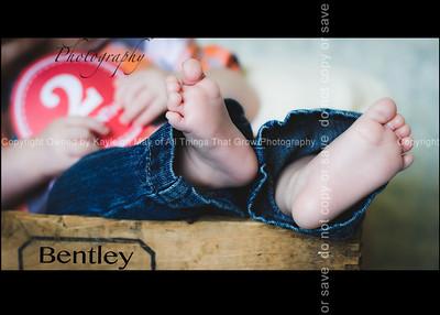 bentley2m-108