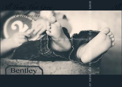 bentley2m-107