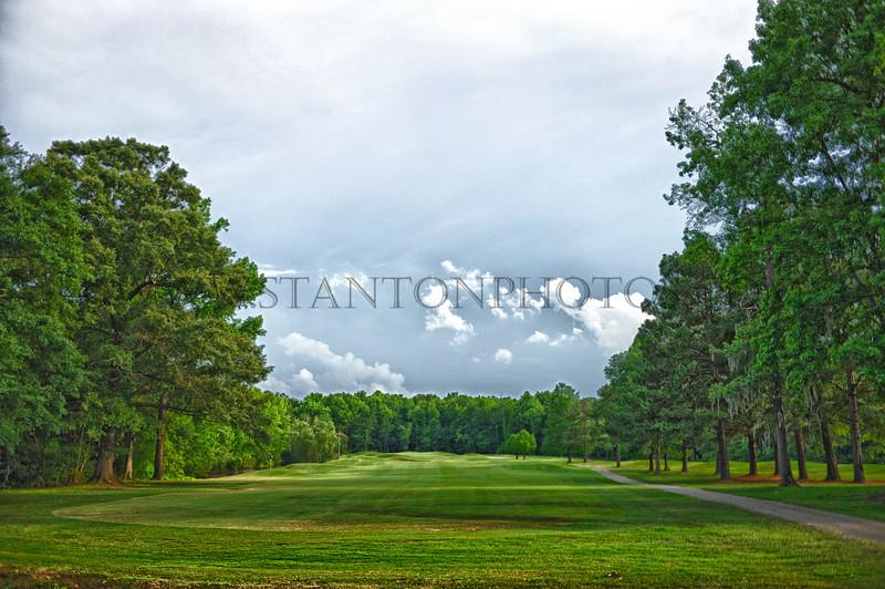 golf28