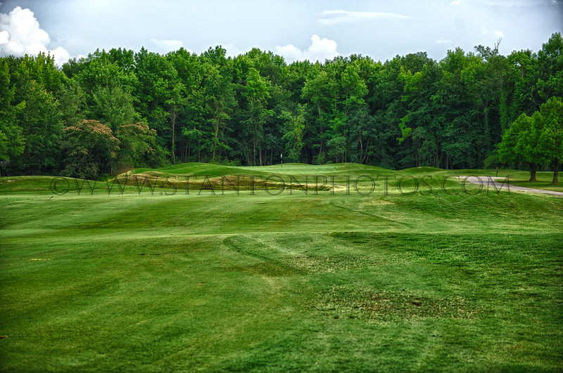 golf31