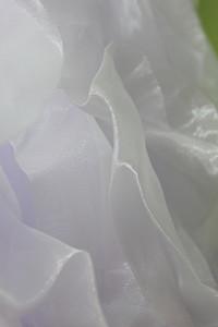 004-004-IMG_8428