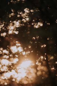 Sunrise-8989