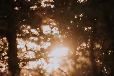 Sunrise-8987