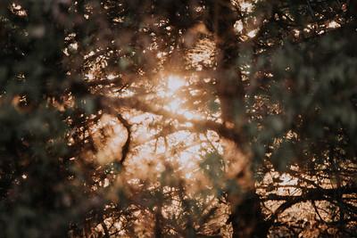 Sunrise-8975