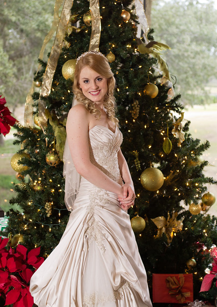Beautiful bride with Christmas tree.