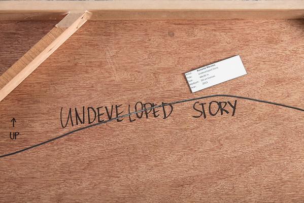 Undeveloped Story