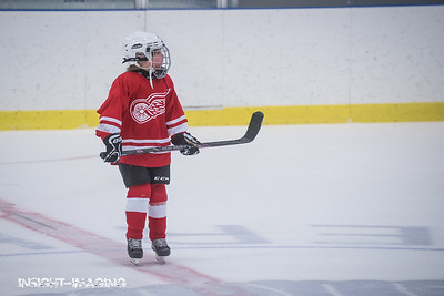 Toronto vs Red Wings Summer League