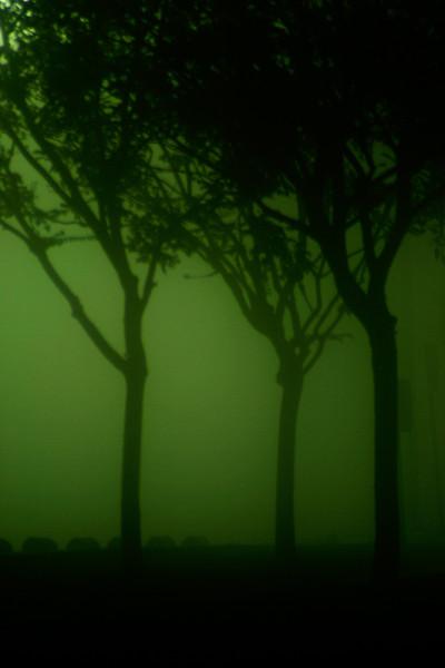 Foggy Night #4