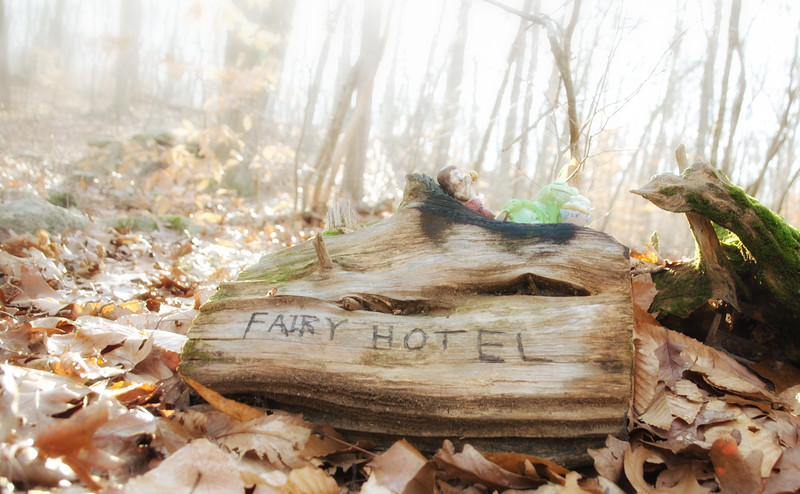 Fairy Hotel at Hartman Park - Lyme, CT