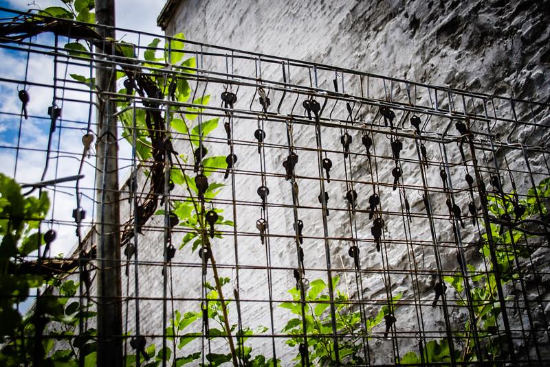 Keys on a fence - Downtown Wilmington, NC