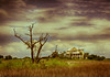 Dramatic Clouds, Tree and House - NC<br /> (couldn't make up my mind which effect I liked best)