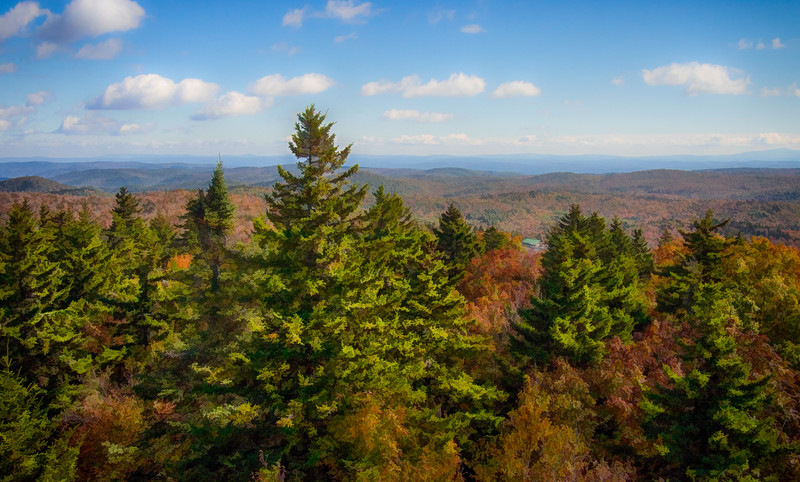 View from Mt. Olga Watchtower - VT