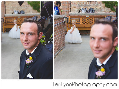 8-Janesville, WI Wedding Photography, Rotary Gardens, and Best Events