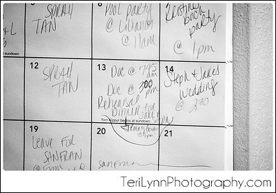 2-Janesville, WI Wedding Photography, Rotary Gardens, and Best Events