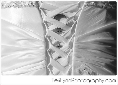 22-Janesville, WI Wedding Photography, Rotary Gardens, and Best Events