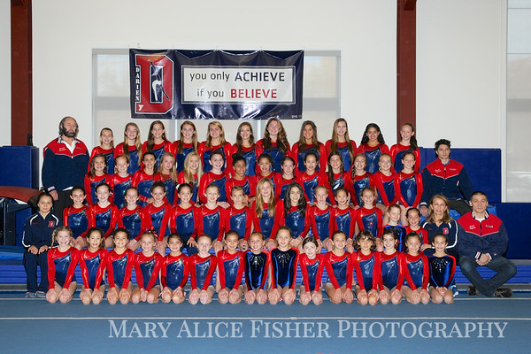 2014 Gymnastics Teams