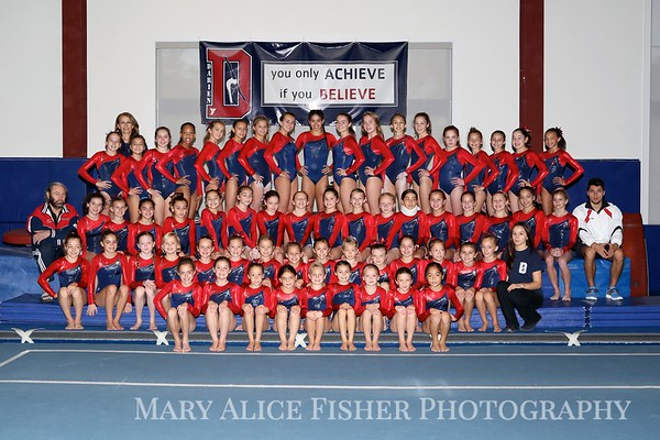 Darien Y Gymnastics Teams 2017