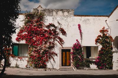 G&D (Boda, Hacienda Los Cues, Querétaro)-3