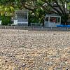The Beach House-41