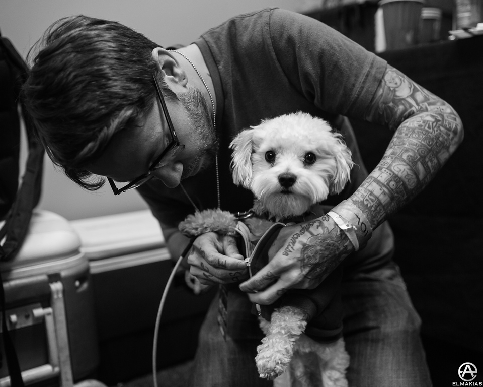 Dave Shapiro and his dog that is up to no good, Pilot
