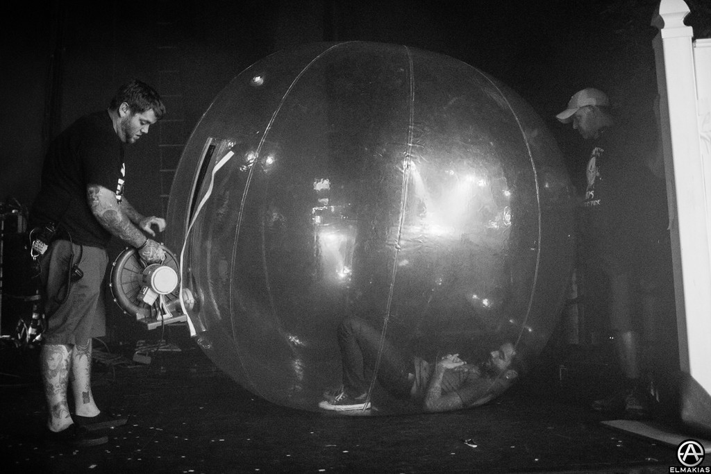 Fill up the hamster ball