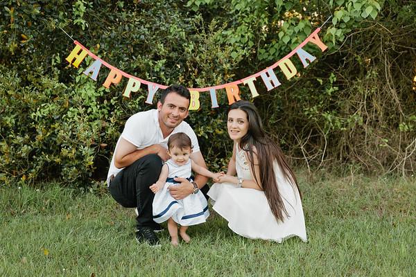 Allison_Birthday_sign-6