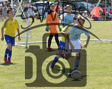 Wimborne + Holts v Ash Rovers U11's00049