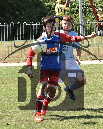 Wimborne + Holts v Illchester Wildcats Red U11's00012