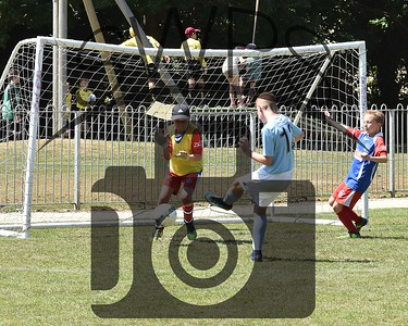 Wimborne + Holts v Illchester Wildcats Red U11's00029