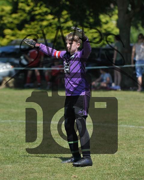 Martock Rovers Black v Maiden Newton Kestrels U13's00042