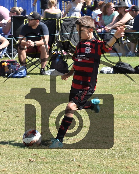 Chesil Vipers v Illminster Town U9's00013