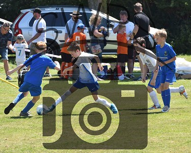 Ilchester Trojans v Wells City Colts U9's00047
