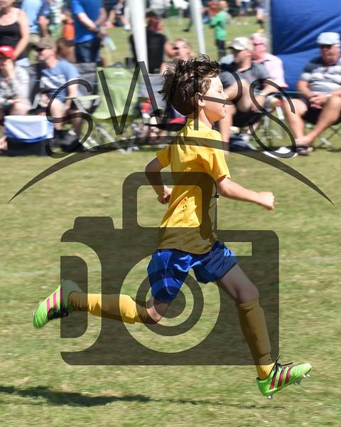Martock Rovers v Wells City Warriors U9's00013