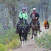 "left, Pam Davenport and ""Kentucky Natural Gaited Horse"" The Traveling Man<br /> 2017 Old Selam<br /> followed by grizzly bear :)"