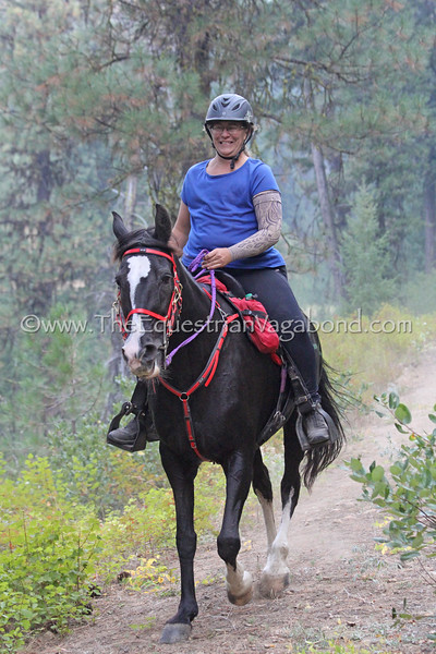 Lora Bannon, Vera, Tennessee Walker mare (no papers)<br /> 2017 Old Selam