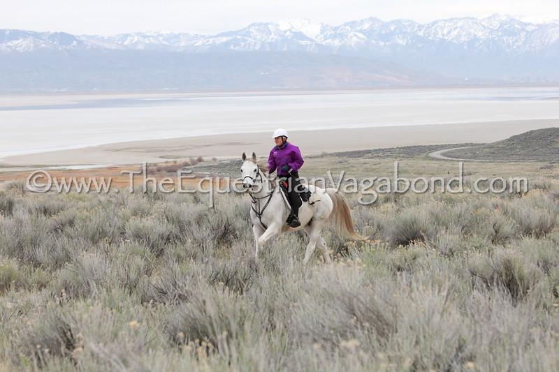 Suzie aboard Greenbriar Al Jabal (Atlas) at the April 2018 Antelope Island ride in Utah
