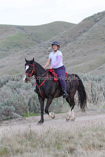 Lora Bannon, Vera, Tennessee Walker mare (no papers)<br /> 2018 Eagle Canyon