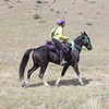 "Pam Davenport and ""Kentucky Natural Gaited Horse"" The Traveling Man<br /> 2018 Eagle Canyon"