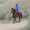 """Joan Zachary, Chico, Paso Fino<br /> It looks like he's trotting, but she says, """"A Paso fino does 3 lateral gaits. The Fino, the Corto and the Largo. The Largo is like the extended trot and the Corto is the Paso's trot. All 4 beat lateral. Chico is a Colombian Paso but there is also a Puerto Rican Paso.""""<br /> 2018 Eagle Canyon"""