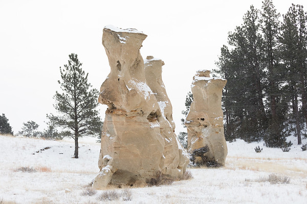Sandstone rock formations in Custer Gallatin NF