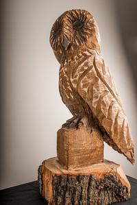 Big Wooden Owl-240114-019