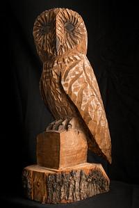 Big Wooden Owl-240114-009