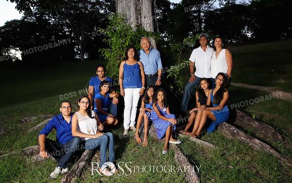 The Ramdathsingh Family